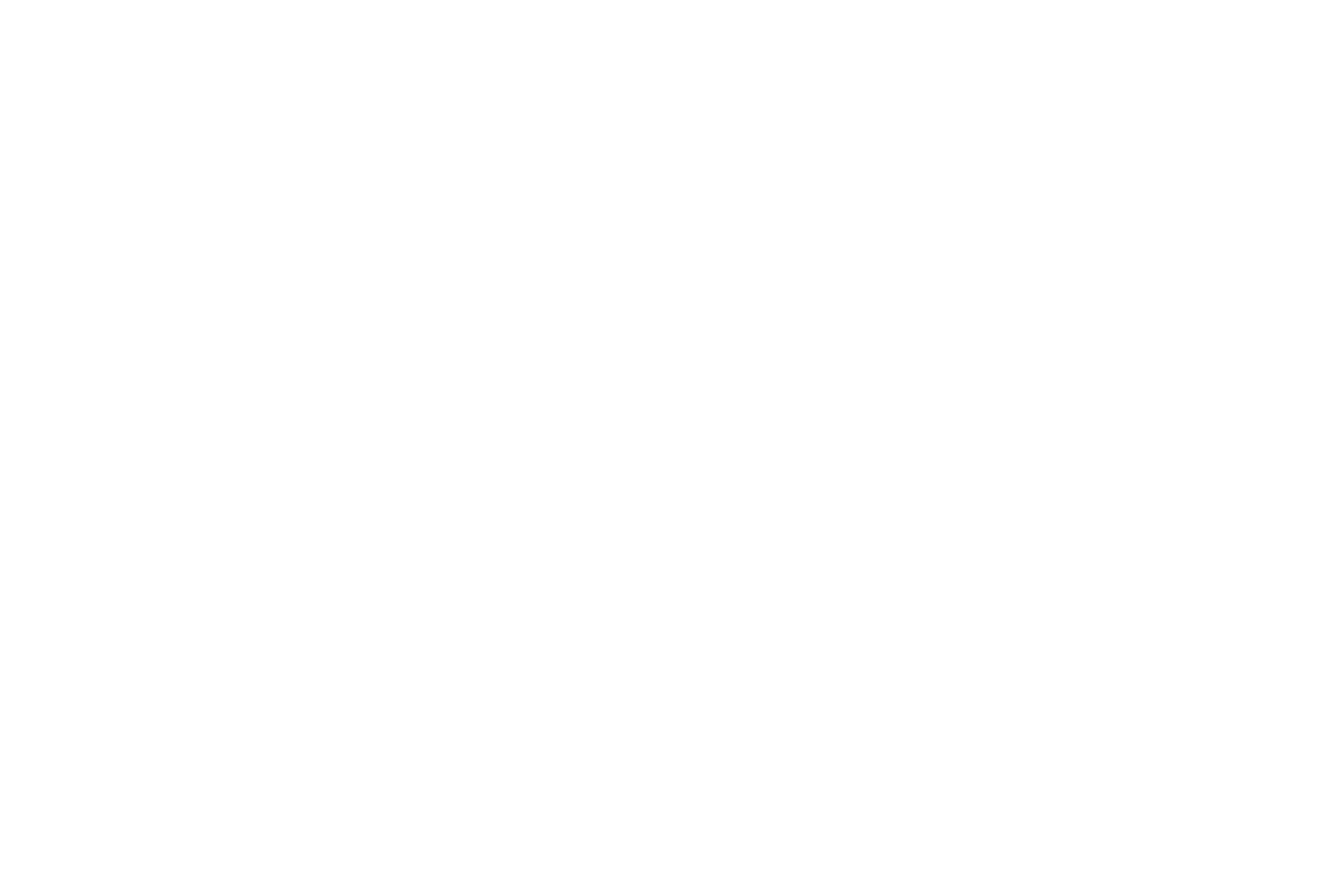 Modern Guide Company